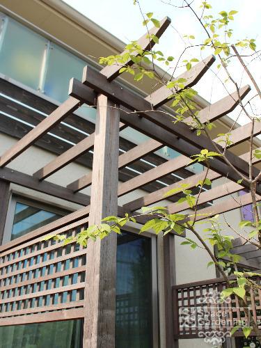 木製パーゴラ テラス屋根 アイアンウッド 1年後