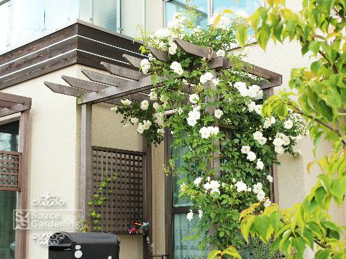 庭 木製パーゴラ テラス屋根 アイアンウッド