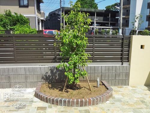 花壇 レンガ シンボルツリー
