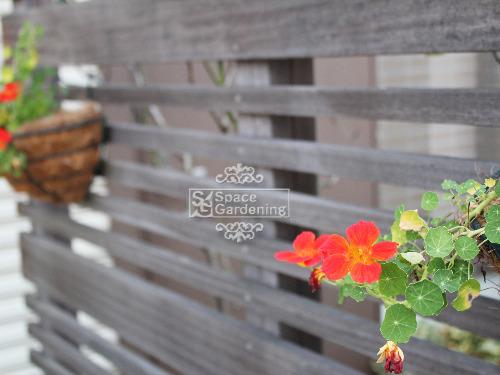 ウッドフェンス 天然木材 ウリン材