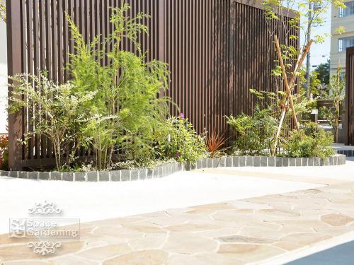 花壇 植栽 ピンコロ花壇