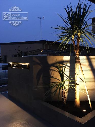 ライトアップ 植栽 常緑樹 ドラセナ