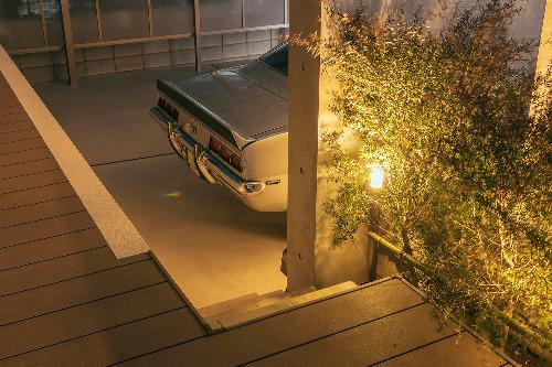 照明 ライティング 植栽