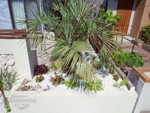 花壇 植栽 シンボルツリー ヤシの木 リゾート植栽