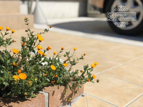 花壇 レンガ