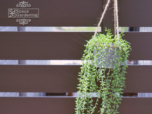 ウッドデッキ ウリン材 樹脂製目隠しフェンス アーバンフェンス