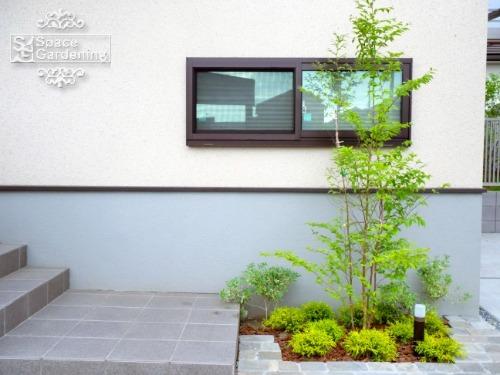 花壇 シンボルツリー 三樂 クラシカルタンブル